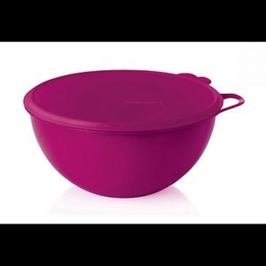 Tupperware 32 Cup Thatsa bowl with bag